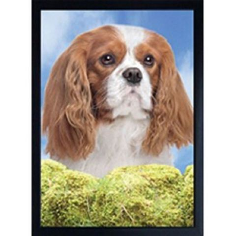 KING CHARLES CAVALIER BLENHEIM 3D FRIDGE MAGNET